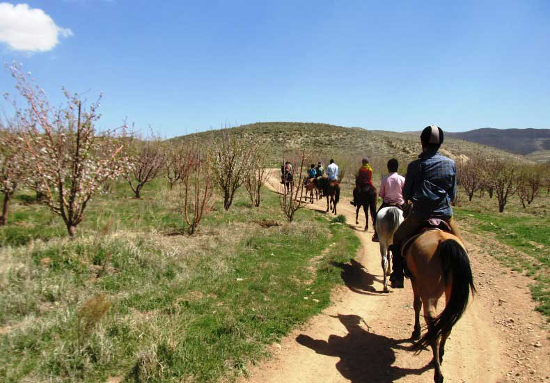 Horse Riding in Pa'qal-e (2 D)